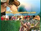 Shemales website Wired Shemales